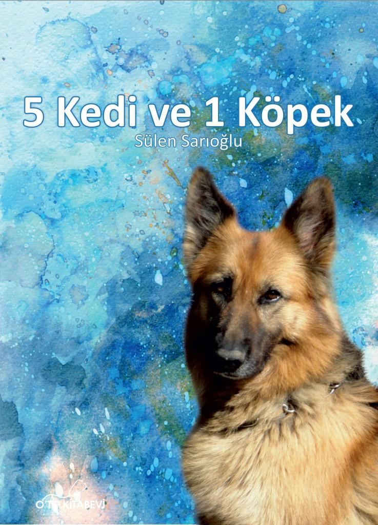 5 Kedi 1 Köpek
